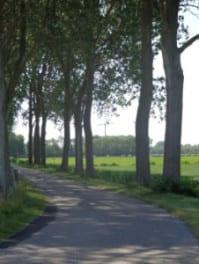 fietsen door de polders van Goerree Overflakkee