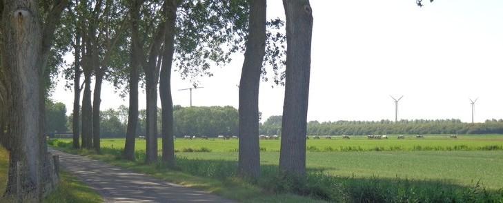 Fietsroutes door de mooie natuuromgeving van Oostflakkee in Zuid-Holland.
