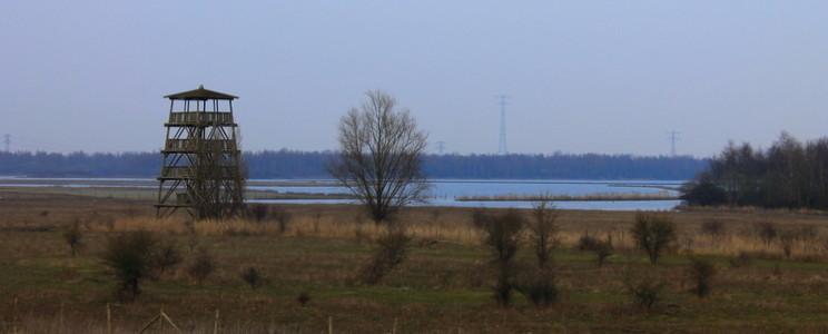 Vogelnuitkijktoren in het natuurgebied Hellegatsplaten in Zuid-Holland.